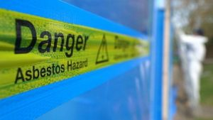 Annual Deaths Due To Asbestos